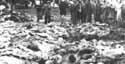 Parte de los cadáveres extraídos de las fosas de Katyn, en Polonia